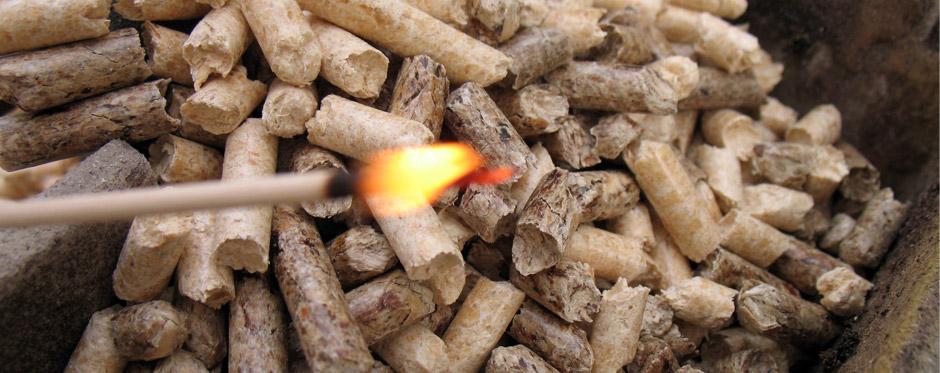 05_biomasse